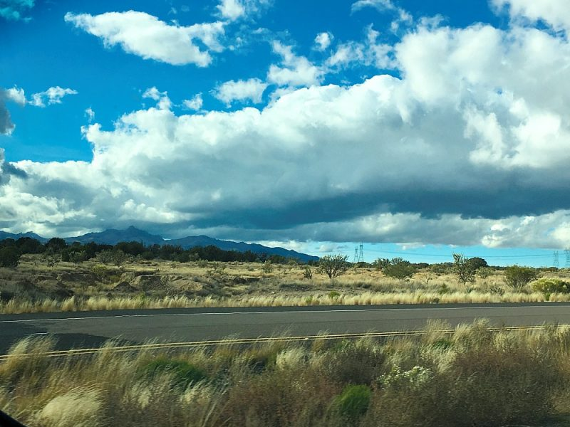 Joshua Tree Parkway AZ12