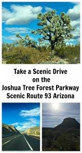 Scenic Drive on Joshua Tree Forest Parkway, Arizona Route 93