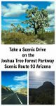 Scenic Drive on Joshua Tree Forest Parkway, Arizona Route 93