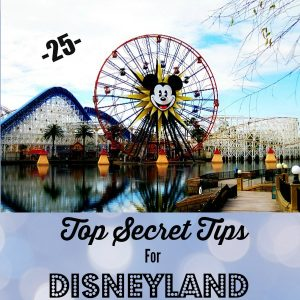 25-Top-Secret-Tips-For-Disneyland