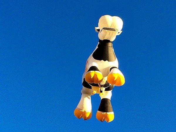 Albuquerque Balloon Fiesta Ten Essential Tips2