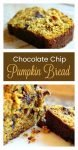 Chocolate Chip Pumpkin Bread9