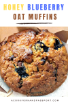 Decadent Blueberry Honey Oat Muffins