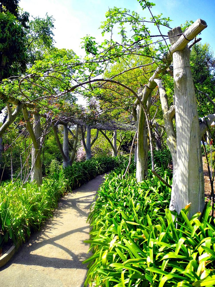 Huntington Library & Gardens3