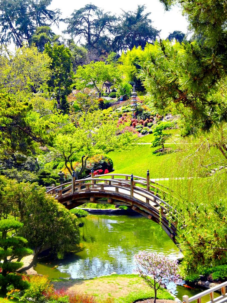 Huntington Library & Gardens6